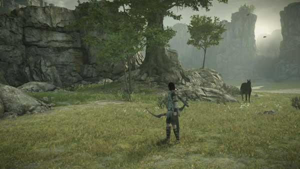 محیط های رمز آلود در بازی Shadow of the Colossus