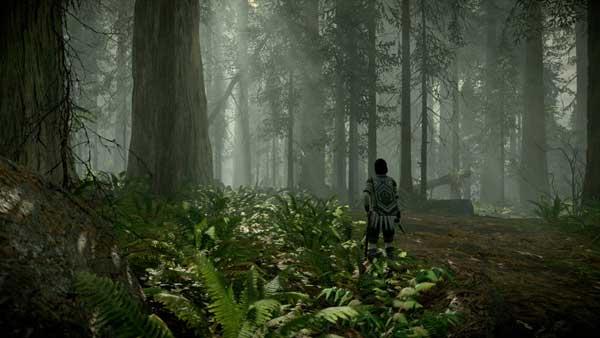 تنوع محیط های بازی Shadow of the Colossus